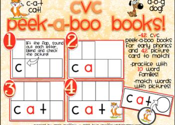 NEW! CVC Peek-a-Boo Books!