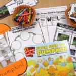 Reading Comprehension in Kindergarten